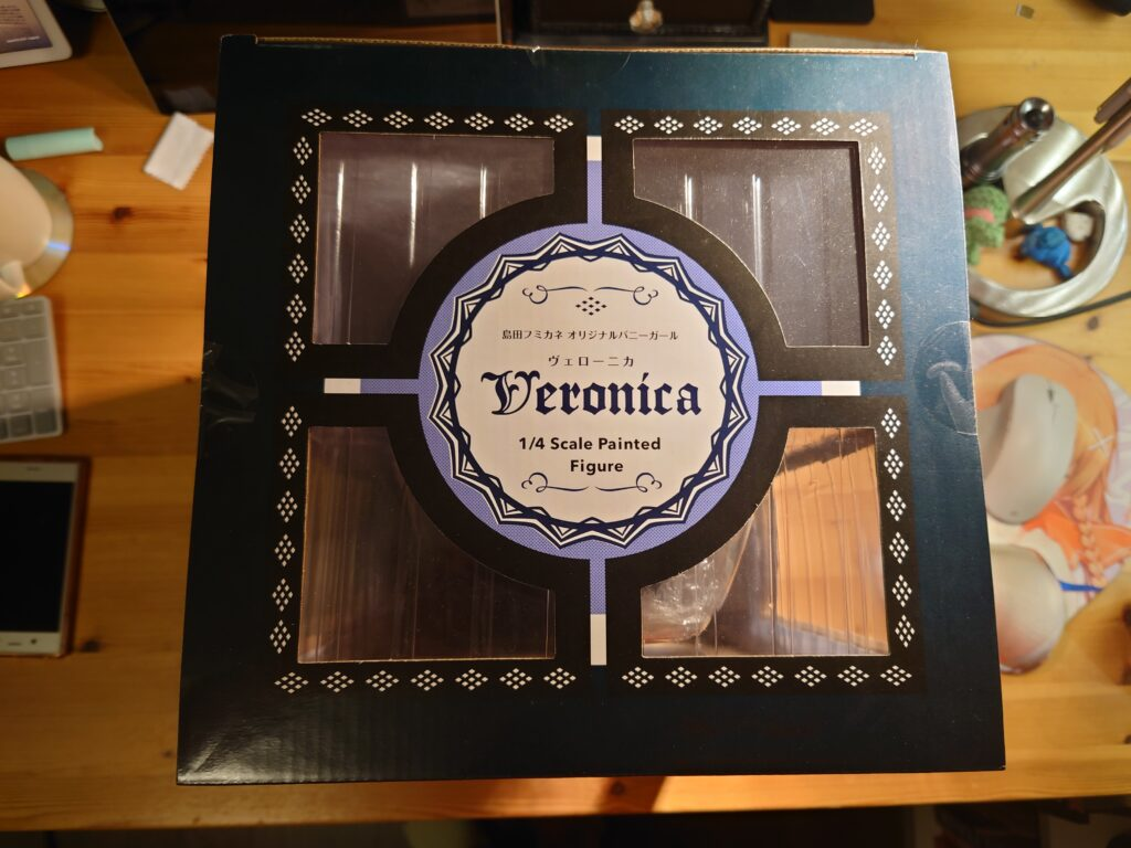 View of the top of the box that Veronica came in.